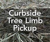 Tree Limb Pickup